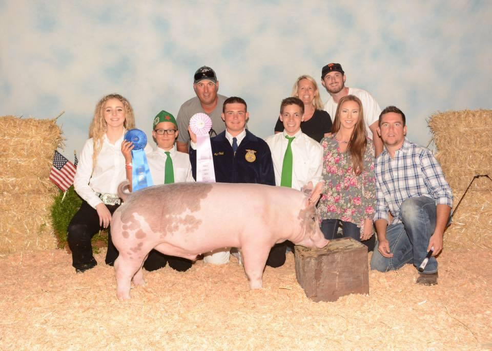 2016 Reserve Light Cross Market Hog.JPG